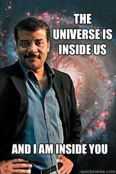 The universe is inside us And I am inside you - The universe is inside us And I am inside you  Neil deGrasse Tyson