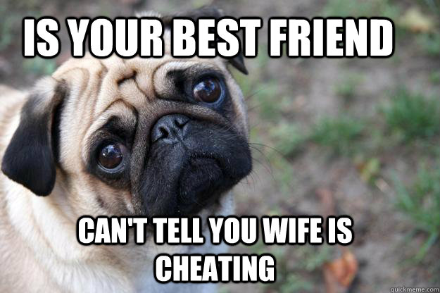 Is your best friend Can't tell you wife is cheating  First World Dog problems