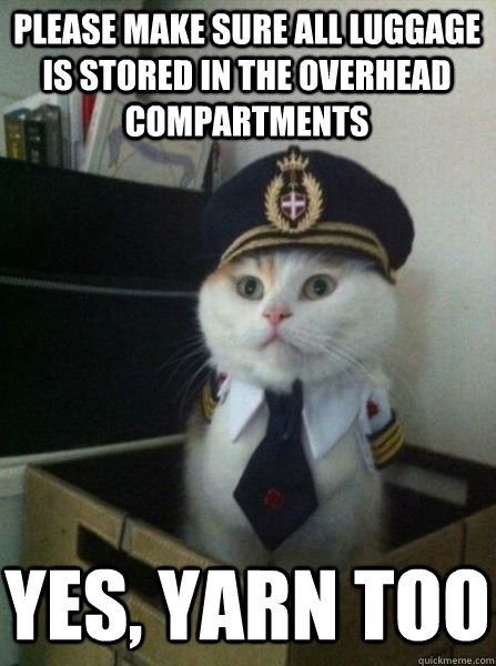 Yes Please Funny Meme : Please make sure all luggage is stored in the overhead