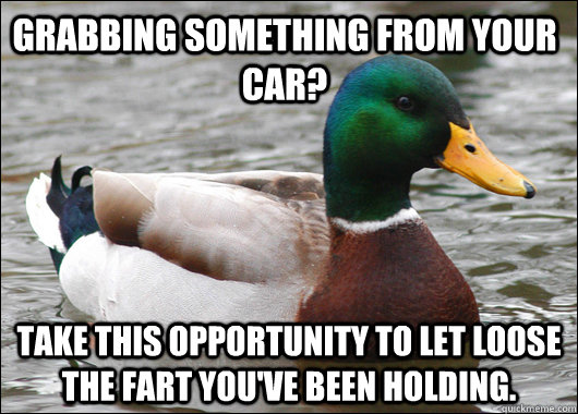 Grabbing something from your car? Take this opportunity to let loose the fart you've been holding. - Grabbing something from your car? Take this opportunity to let loose the fart you've been holding.  Actual Advice Mallard