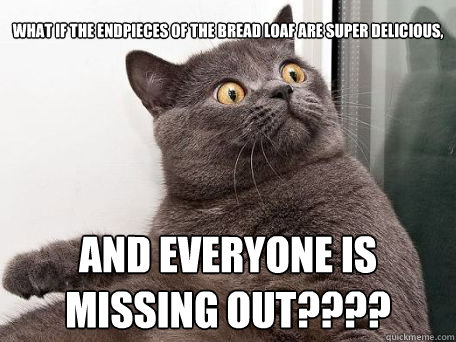 conspiracy cat - quickmeme Super Funny Cat Pictures With Captions