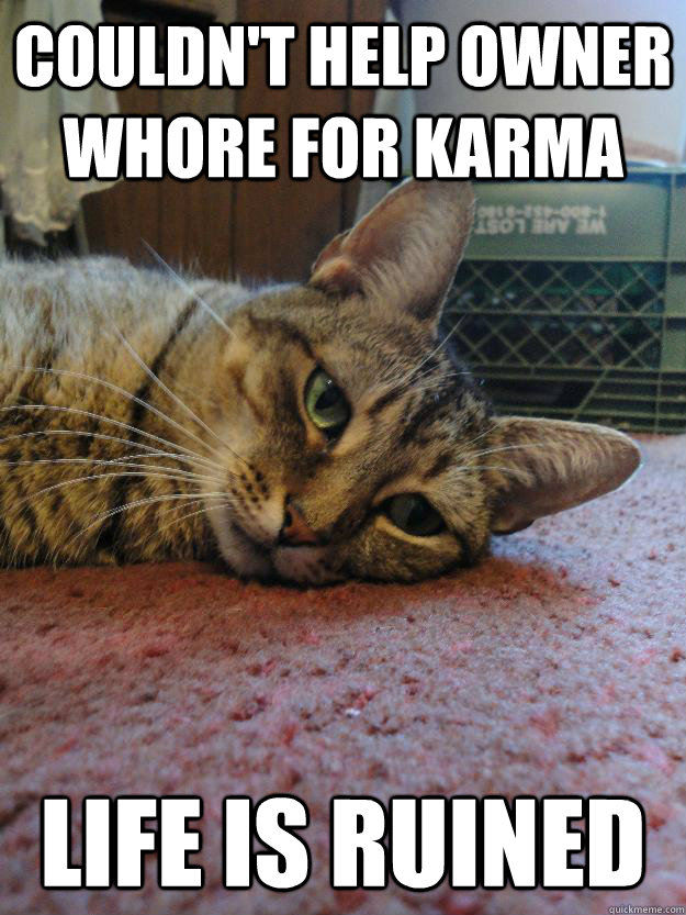 Couldn't help owner whore for karma life is ruined - Couldn't help owner whore for karma life is ruined  Life Is Ruined Cat