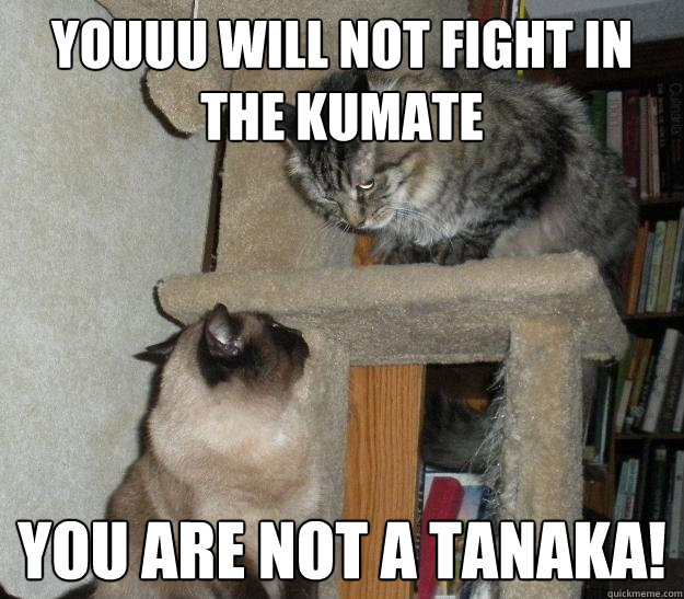 Youuu will not fight in the kumate You are not a tanaka!