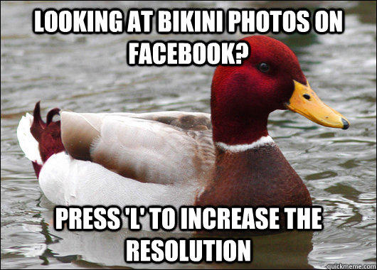 Looking at bikini photos on facebook? press 'l' to increase the resolution - Looking at bikini photos on facebook? press 'l' to increase the resolution  Malicious Advice Mallard