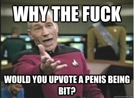 why the fuck would you upvote a penis being bit? - why the fuck would you upvote a penis being bit?  Misc