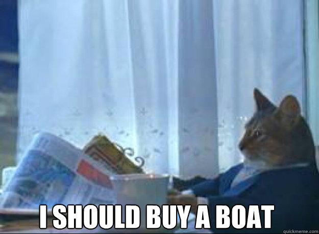 I should buy a boat   I should buy a boat cat