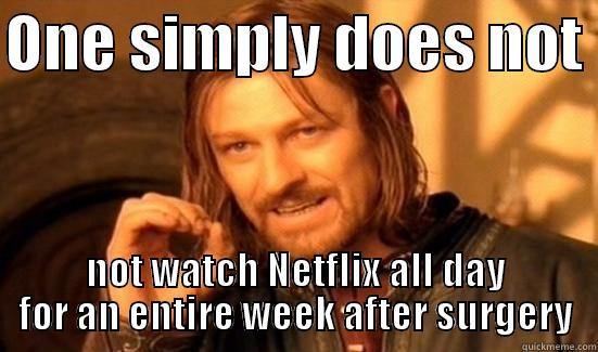 Shoulder surgery - ONE SIMPLY DOES NOT  NOT WATCH NETFLIX ALL DAY FOR AN ENTIRE WEEK AFTER SURGERY Boromir