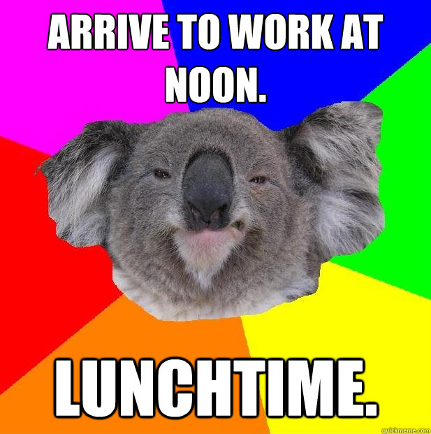 Arrive to work at noon. lunchtime.  Incompetent coworker koala