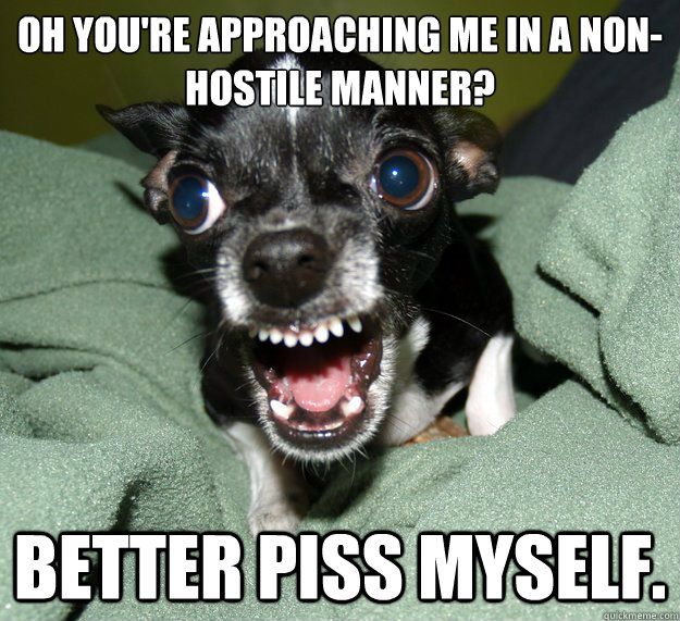 Oh you're approaching me in a non-hostile manner? Better piss myself.