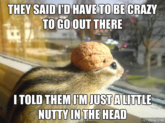 they said I'd have to be crazy to go out there I told them I'm just a little nutty in the head