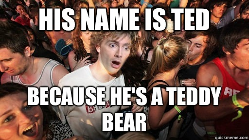 His Name is Ted Because He's a Teddy Bear - His Name is Ted Because He's a Teddy Bear  Sudden Clarity Doctor