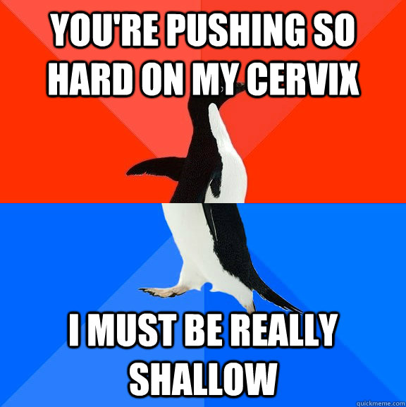 You're pushing so hard on my cervix i must be really shallow - You're pushing so hard on my cervix i must be really shallow  Socially Awesome Awkward Penguin
