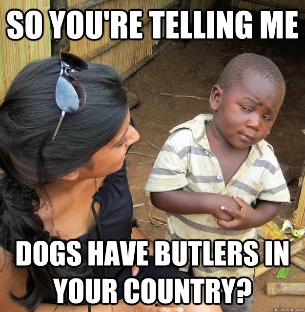 So you're telling me Dogs have butlers in your country? - So you're telling me Dogs have butlers in your country?  Skeptical Third World Child