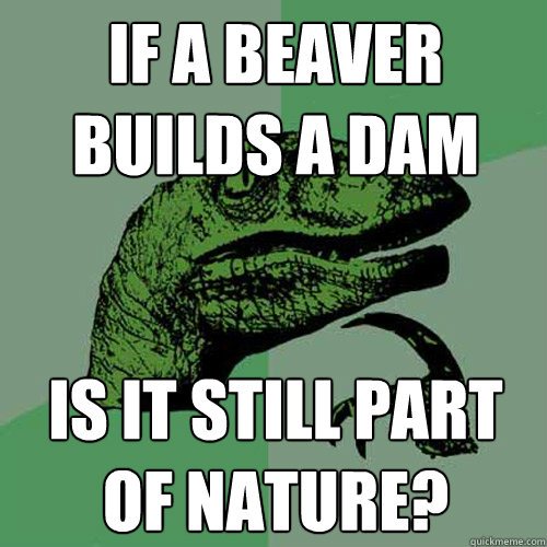 If a beaver builds a dam Is it still part of nature? - If a beaver builds a dam Is it still part of nature?  Philosoraptor