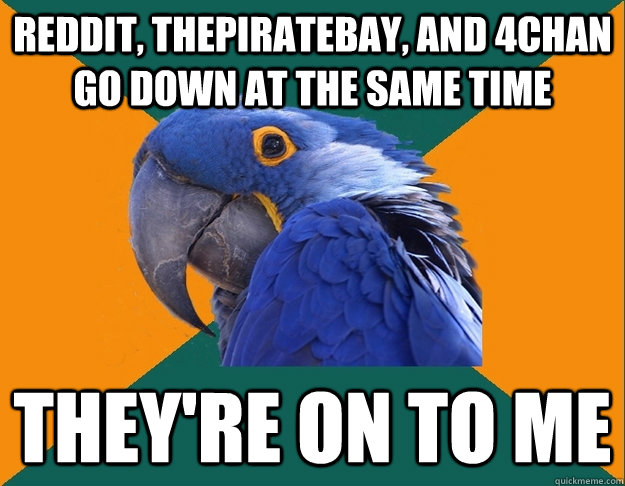 Reddit, thepiratebay, and 4chan go down at the same time they're on to me - Reddit, thepiratebay, and 4chan go down at the same time they're on to me  Paranoid Parrot