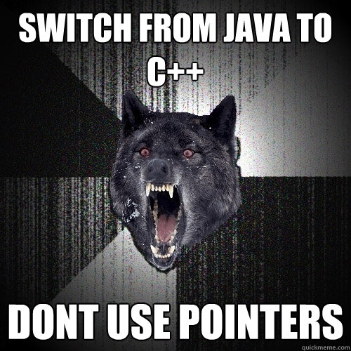 Switch From Java To C Dont Use Pointers Insanity Wolf Quickmeme