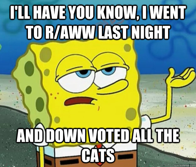I'll have you know, I went to r/aww last night And down voted all the cats - I'll have you know, I went to r/aww last night And down voted all the cats  Tough Spongebob