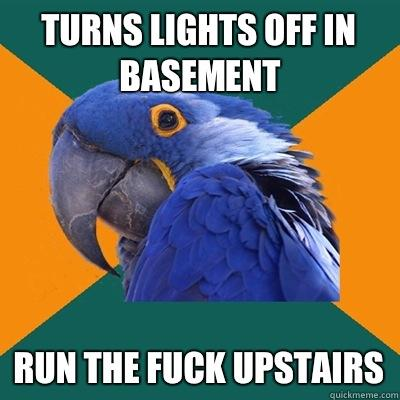 TURNS LIGHTS OFF IN BASEMENT RUN THE FUCK UPSTAIRS - TURNS LIGHTS OFF IN BASEMENT RUN THE FUCK UPSTAIRS  Paranoid Parrot
