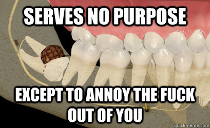 serves no purpose except to annoy the fuck out of you - serves no purpose except to annoy the fuck out of you  Misc