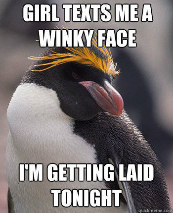 Girl texts me a winky face I'm getting laid tonight - Girl texts me a winky face I'm getting laid tonight  Socially Overconfident Penguin