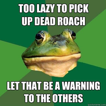 too lazy to pick  up dead roach let that be a warning to the others - too lazy to pick  up dead roach let that be a warning to the others  Foul Bachelor Frog