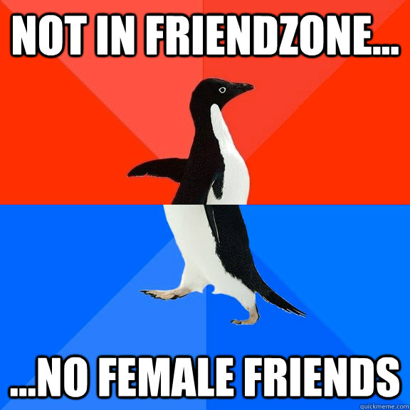Not in friendzone... ...no female friends - Not in friendzone... ...no female friends  Socially Awesome Awkward Penguin