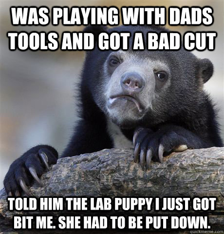 Was playing with dads tools and got a bad cut told him the lab puppy i just got bit me. she had to be put down.  - Was playing with dads tools and got a bad cut told him the lab puppy i just got bit me. she had to be put down.   Confession Bear