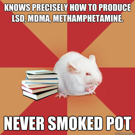 knows precisely how to produce lsd, mdma, methamphetamine. never smoked pot  Science Major Mouse