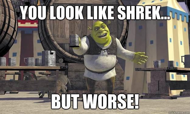 You Look like shrek... But Worse!