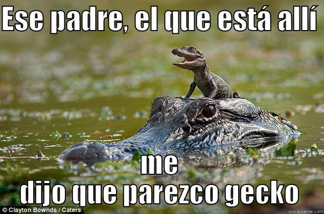 2d9ad6685d6c87eb47a50ae660438360d7e02b74fd95160f8d45a03a1661a4d9 called me a gecko meme quickmeme