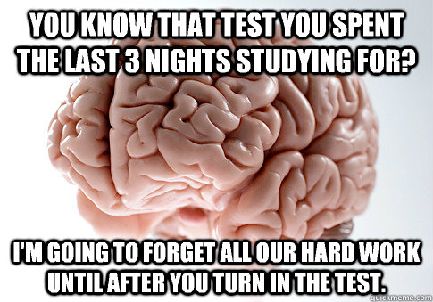 You know that test you spent the last 3 nights studying for? I'm going to forget all our hard work until after you turn in the test. - You know that test you spent the last 3 nights studying for? I'm going to forget all our hard work until after you turn in the test.  Scumbag Brain