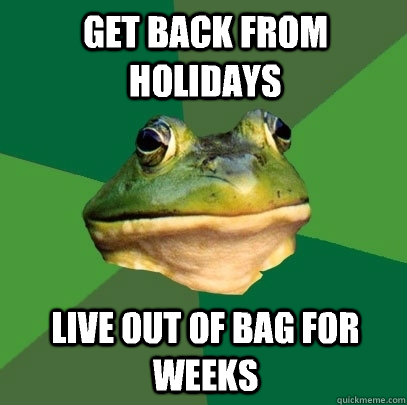 Get back from holidays Live out of bag for weeks - Get back from holidays Live out of bag for weeks  Foul Bachelor Frog
