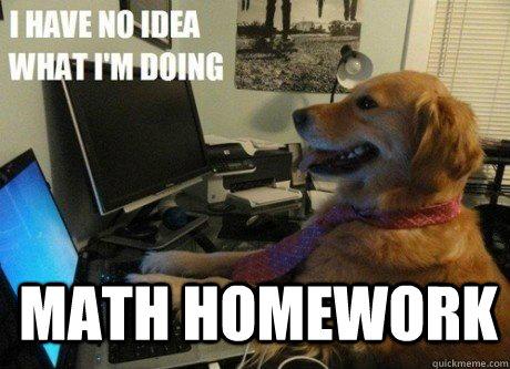 Math Homework   I have no idea what Im doing dog