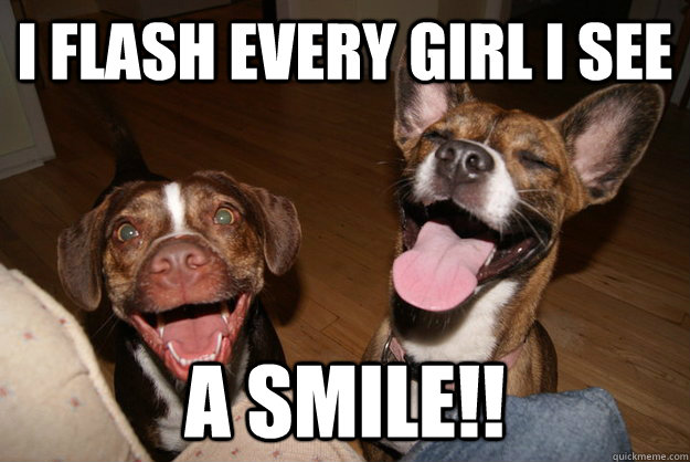 i flash every girl i see a smile!! - i flash every girl i see a smile!!  Clean Joke Puppies