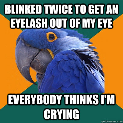 BLINKED TWICE TO GET AN EYELASH OUT OF MY EYE EVERYBODY THINKS I'M CRYING - BLINKED TWICE TO GET AN EYELASH OUT OF MY EYE EVERYBODY THINKS I'M CRYING  Paranoid Parrot