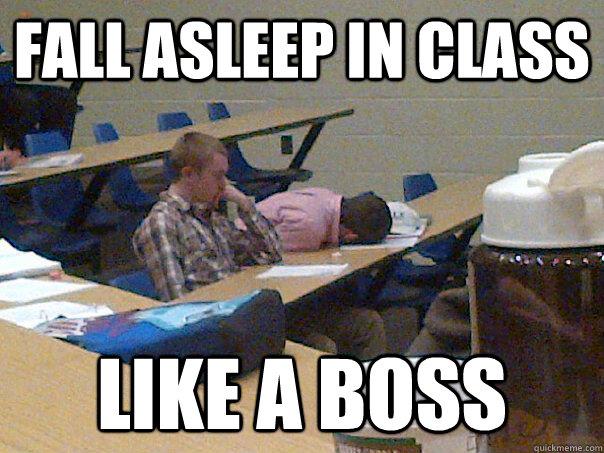 Fall asleep in class like a boss
