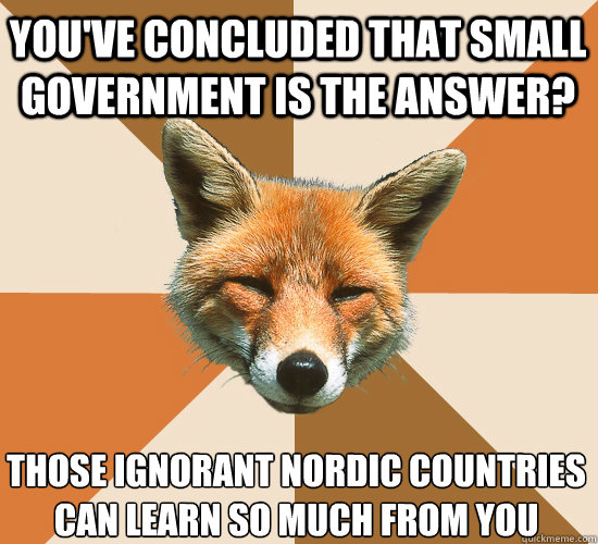 You've concluded that small government is the answer? Those ignorant Nordic countries  can learn so much from you - You've concluded that small government is the answer? Those ignorant Nordic countries  can learn so much from you  Condescending Fox