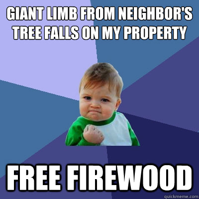 Giant limb from neighbor's tree falls on my property Free firewood - Giant limb from neighbor's tree falls on my property Free firewood  Success Kid
