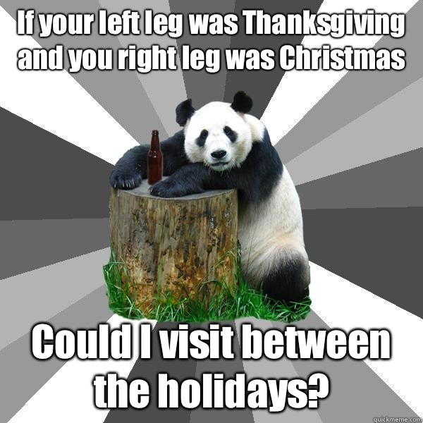 If your left leg was Thanksgiving and you right leg was Christmas Could I visit between the holidays? - If your left leg was Thanksgiving and you right leg was Christmas Could I visit between the holidays?  Pickup-Line Panda