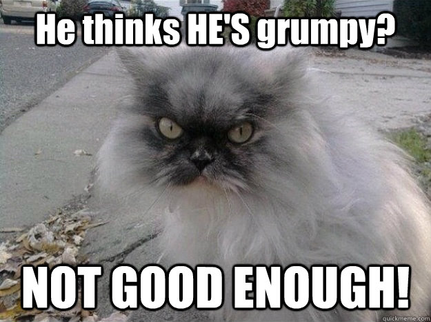 He thinks HE'S grumpy? NOT GOOD ENOUGH!  New Grumpy Cat