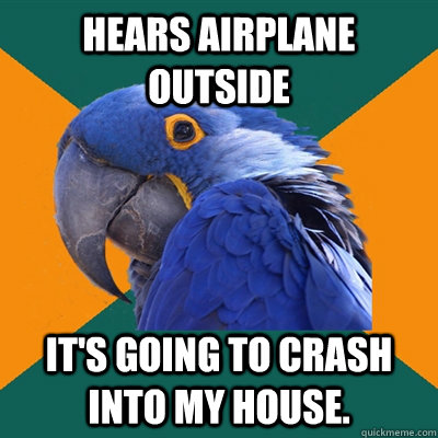 hears airplane outside It's going to crash into my house. - hears airplane outside It's going to crash into my house.  Paranoid Parrot