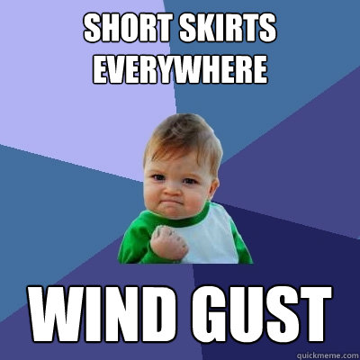 short skirts everywhere wind gust - short skirts everywhere wind gust  Success Kid