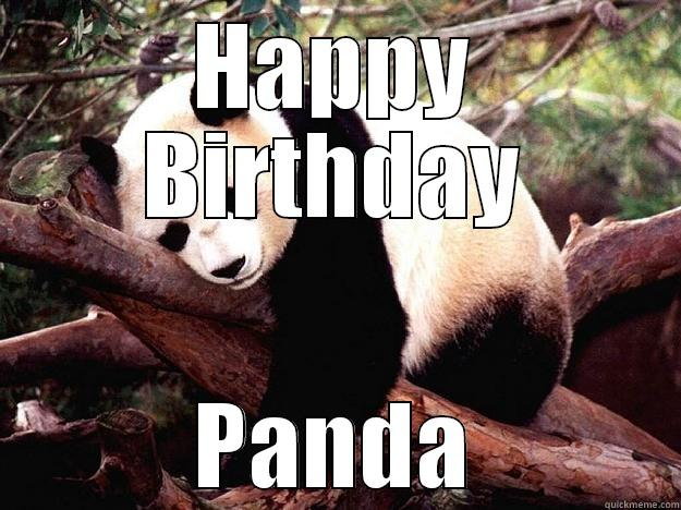 2eb2b60b02cfeca7427d0c8b83043c6dee2c177100dca6c96efe65460b2ef416 panda's birthday quickmeme