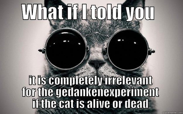 WHAT IF I TOLD YOU         IT IS COMPLETELY IRRELEVANT FOR THE GEDANKENEXPERIMENT IF THE CAT IS ALIVE OR DEAD Morpheus Cat Facts