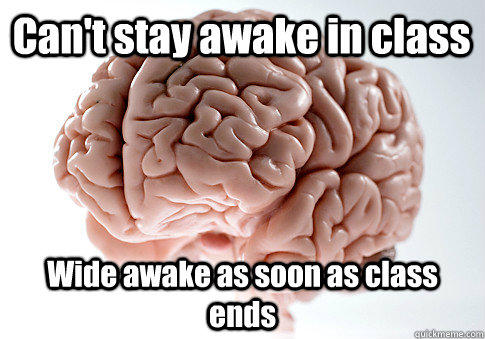 Can't stay awake in class Wide awake as soon as class ends - Can't stay awake in class Wide awake as soon as class ends  Scumbag Brain