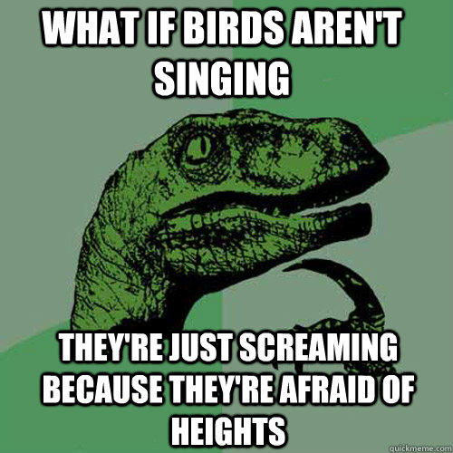 What if birds aren't singing  They're just screaming because they're afraid of heights - What if birds aren't singing  They're just screaming because they're afraid of heights  Philosoraptor