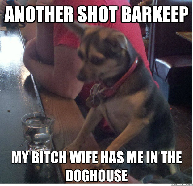 Another shot barkeep My bitch wife has me in the doghouse