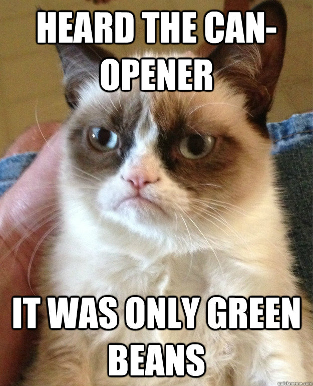 Heard the can-opener It was only Green Beans - Heard the can-opener It was only Green Beans  Misc