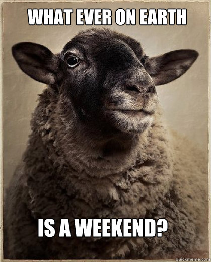 What ever on earth is a weekend?