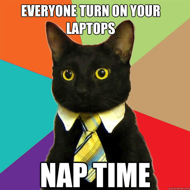 Everyone turn on your laptops nap time - Everyone turn on your laptops nap time  Business Cat